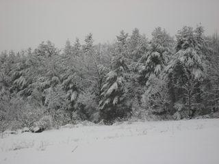 Deering Rt 149 View1-sm