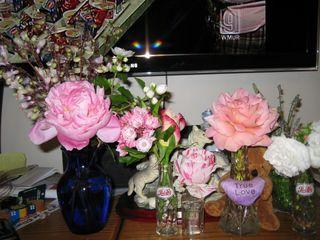 Few Flowers