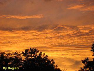 Sunset 7-10 Zoom-sig