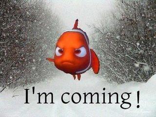 Storm Nemo