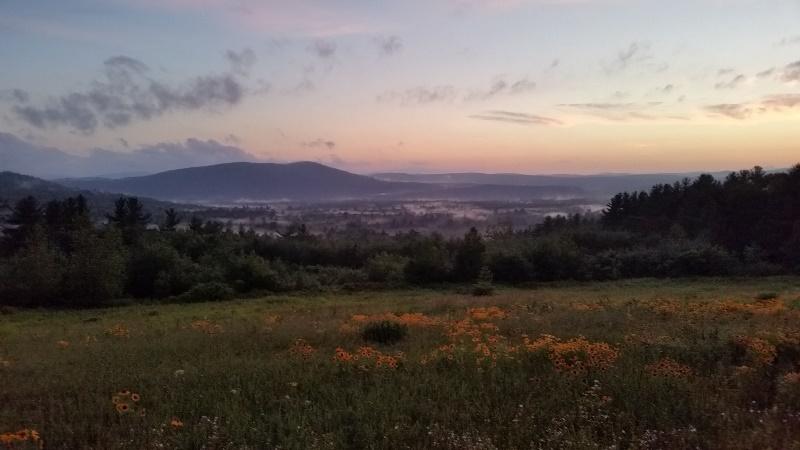 Deering View 3