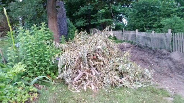 Pile of limbs by flower bed