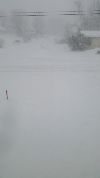 Snow at 2pm-trnd