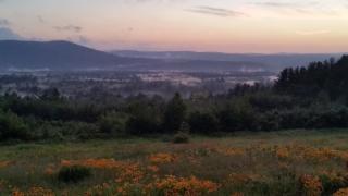 Deering View 1
