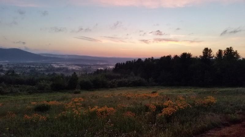 Deering View 2
