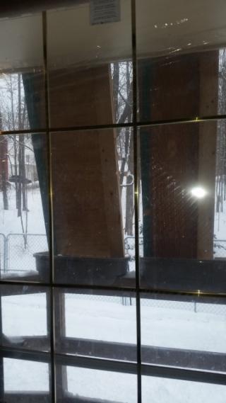 Snow break-trnd