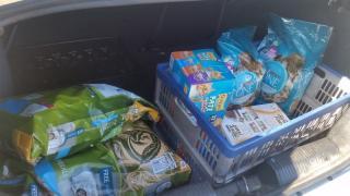 Cat food donation-sm