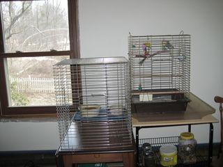 Birdie new used cage