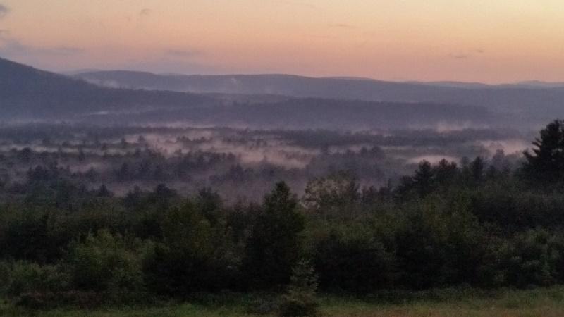 Deering View 4