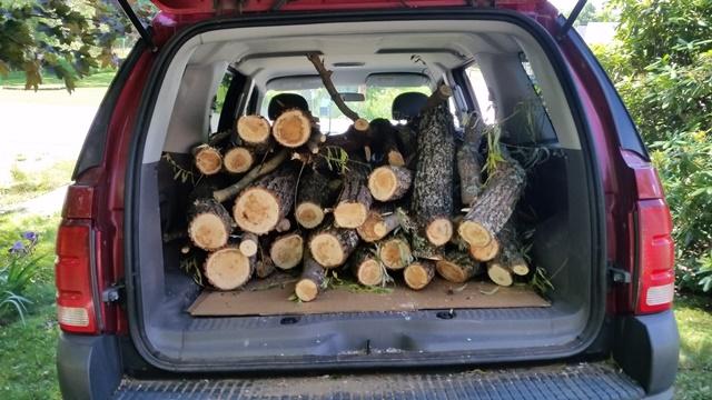 Truck full of wood 4th trip