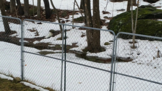 Snow melt and stream in back yard