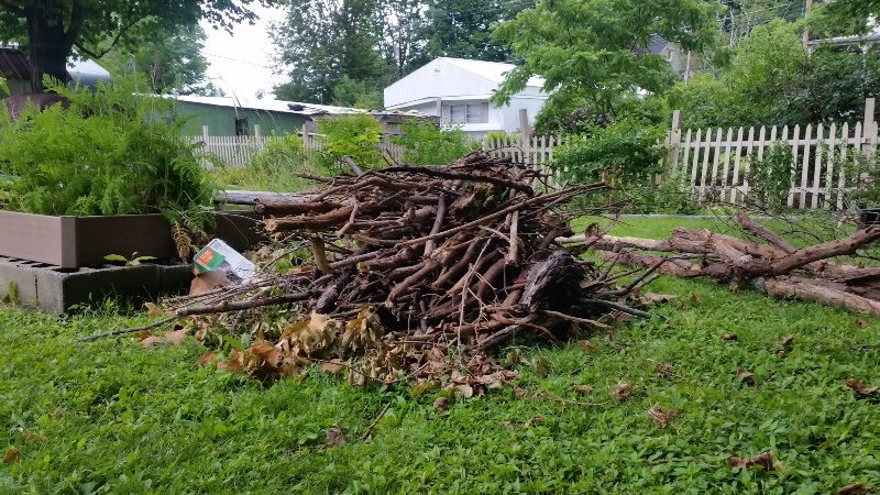 Wood pile by raised beds