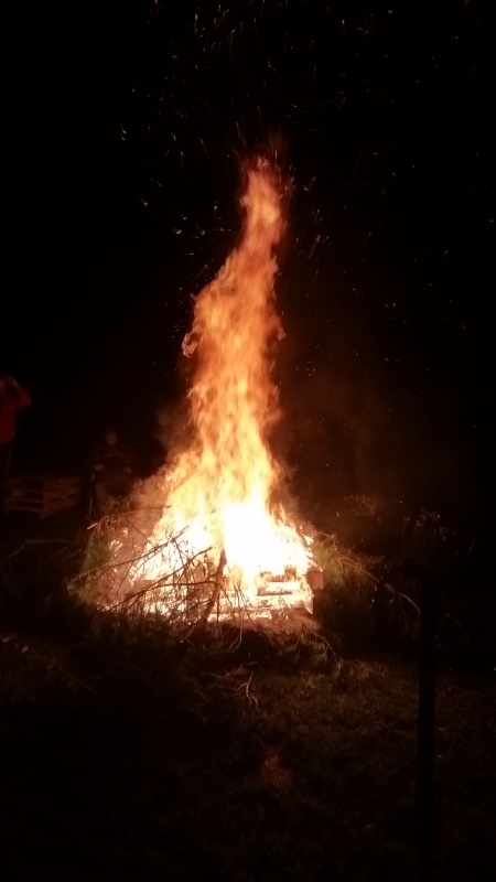 Bonfire 1-trhnd