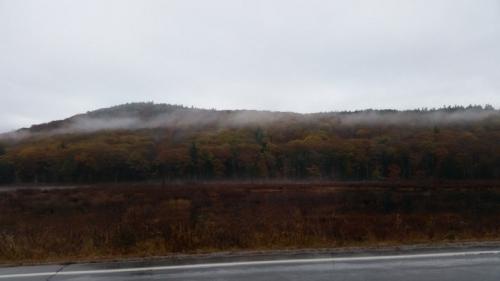 Swamp fog in Weare Perkins pond