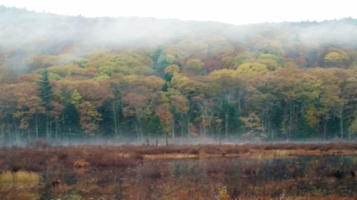 Swamp fog in Weare Perkins pond-corrected