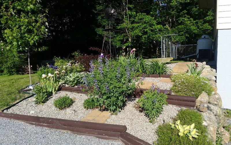 Garden by garage 6-12-19