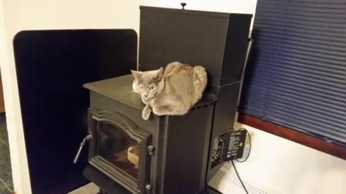 Spot on stove