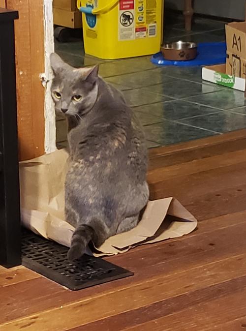 Spot on paper bag
