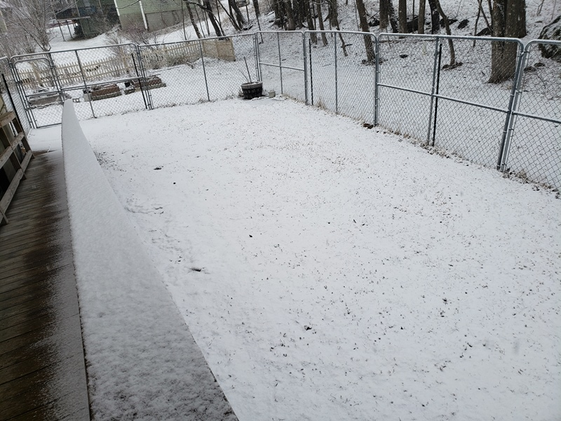 Stare of snow 3-23-20