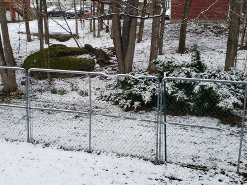 Snow on 4-18-20