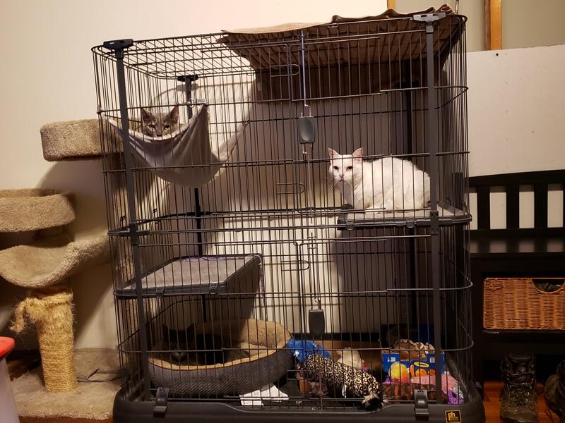In jail during tornado warning 1