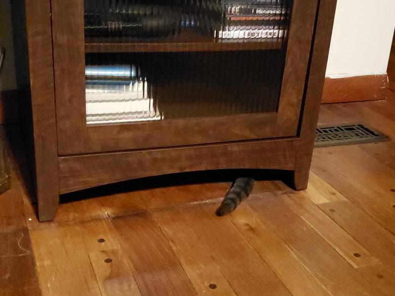 Spot under AV Cabinet 2