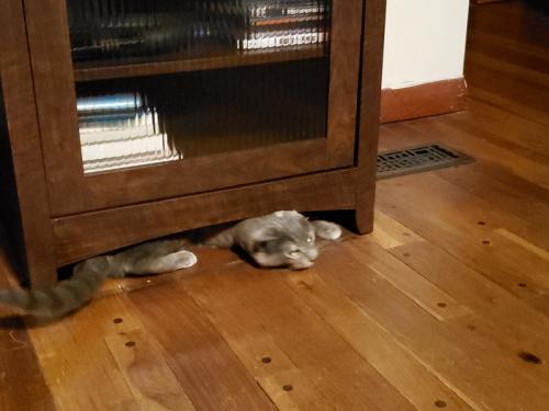 Spot under AV Cabinet 3