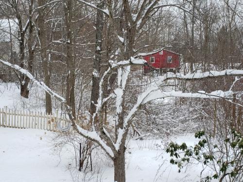 Snow off back of -trnd