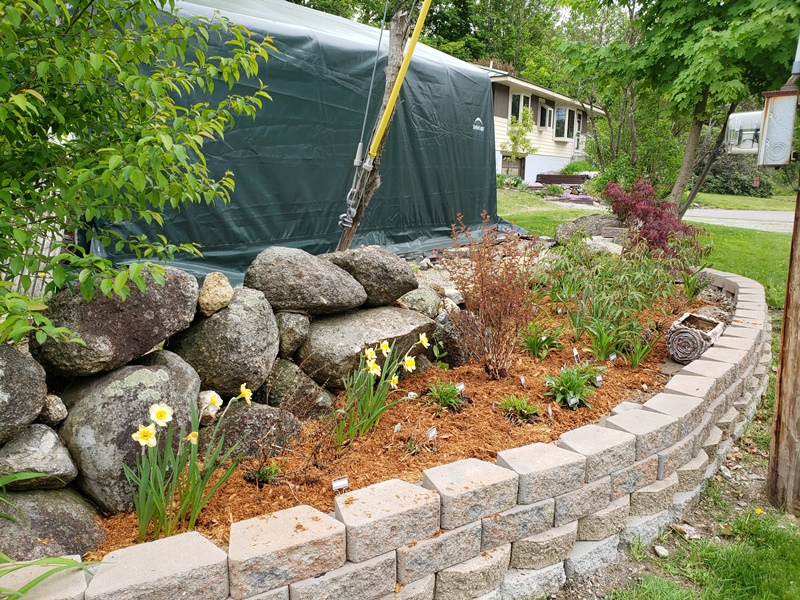 Roadside garden mulched from fence