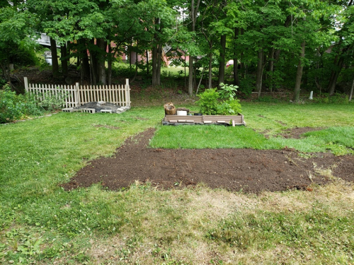 First raised bed gone