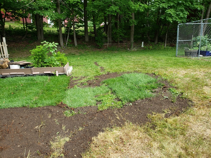 Dirt spread to level by grass sod
