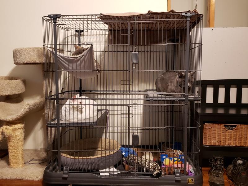 In jail during tornado warning 2