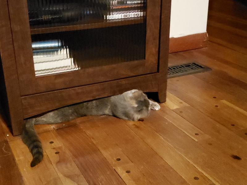Spot under AV Cabinet 6
