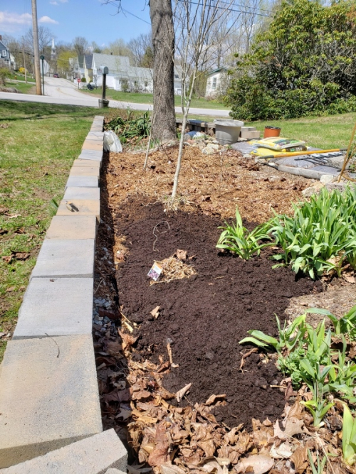 Toward beginning with some soil added