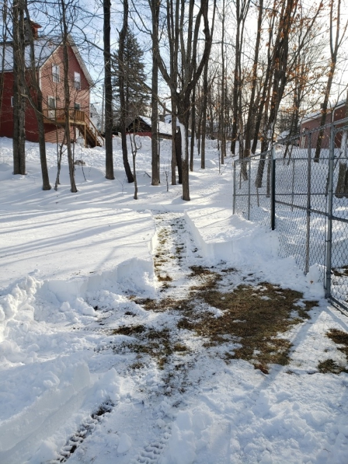 20-25 ft of fence line cleared-trnd