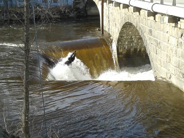 River at bridge