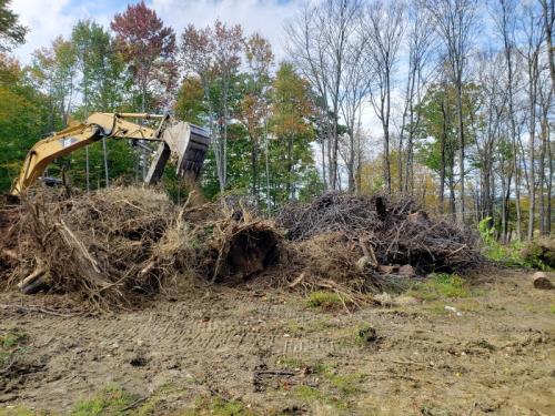 45 - brush pile as I left