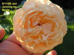 Jerijennings61108